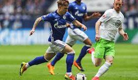 Prediksi Schalke 04 vs Wolfsburg 21 Januari 2019